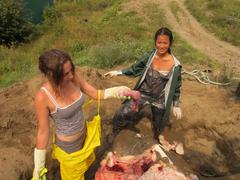 Heart of an ocean sunfish being collected by Emily Guevara (left) and Minh Thu Le. Photo taken by Yifu Wang 20/08/13